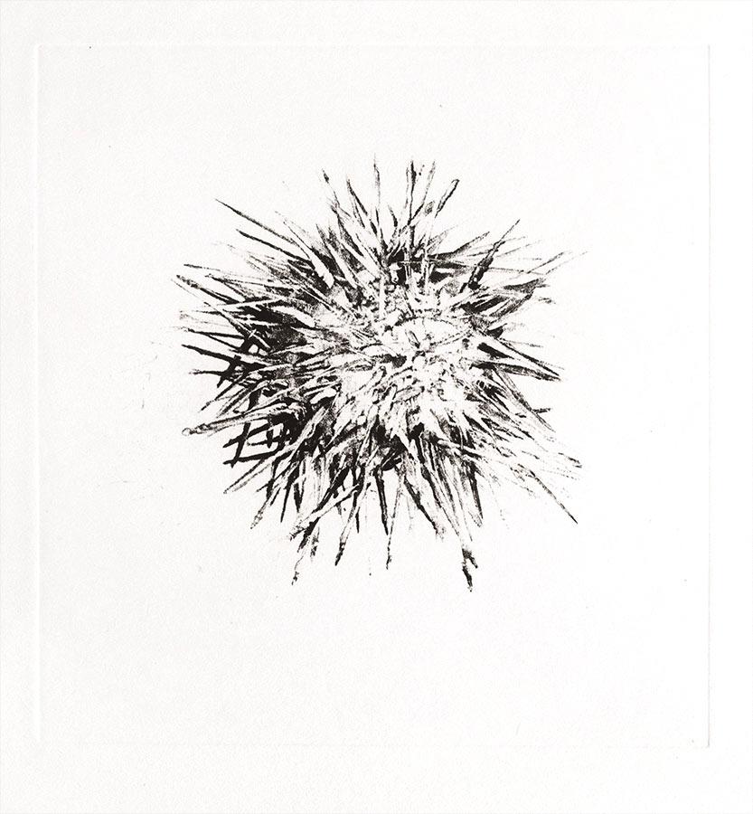 Fantôme 1. Monotype, 21 x 20 cm, 2013