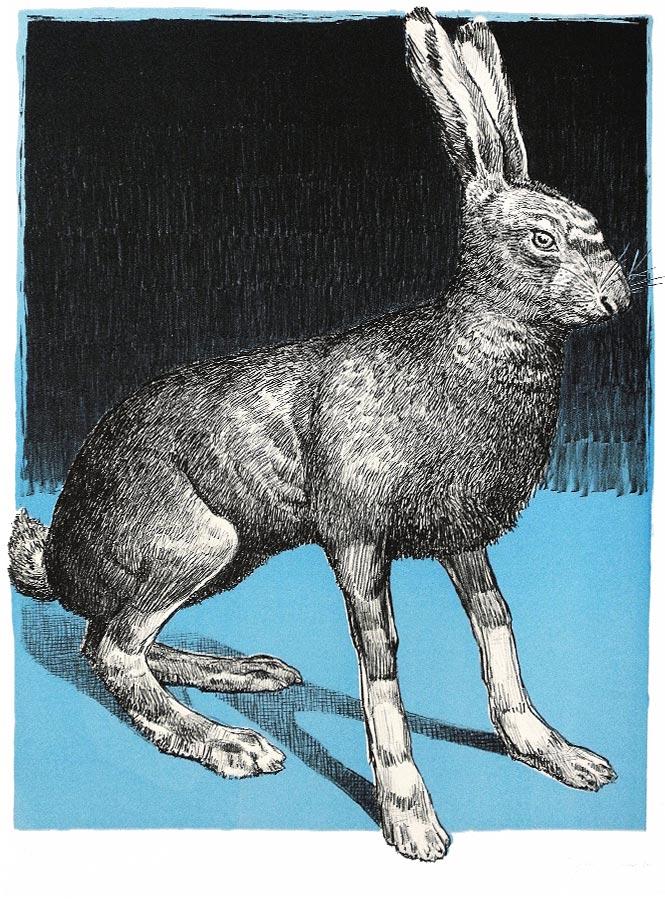 Lièvre bleu. Lithographie 15 ex. 66 x 50 cm, 2011