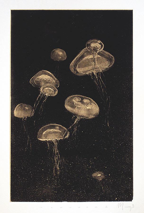 Méduses 2. Monotype, 34 x 22 cm, 2013