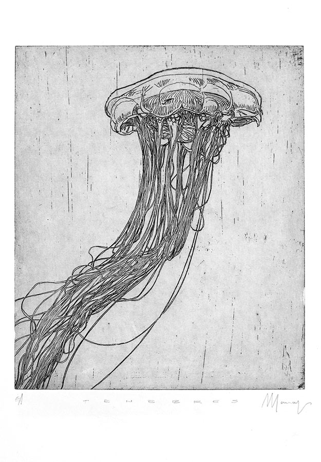 Ténèbres 1. Gravure (cuvette) 18 x 15 cm, 2014