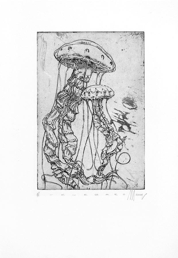 Ténèbres 11. Gravure (cuvette) 18 x 15 cm, 2014