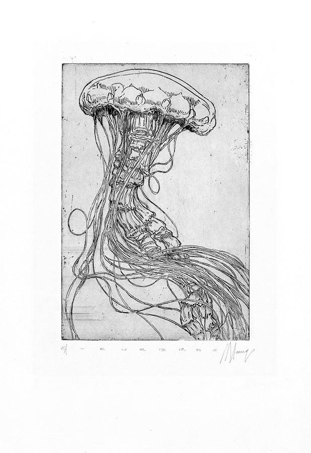 Ténèbres 12. Gravure (cuvette) 18 x 15 cm, 2014
