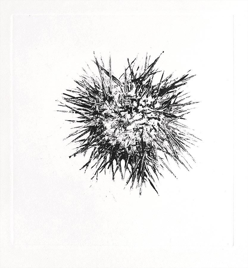 Fantôme 2. Monotype, 21 x 20 cm, 2013