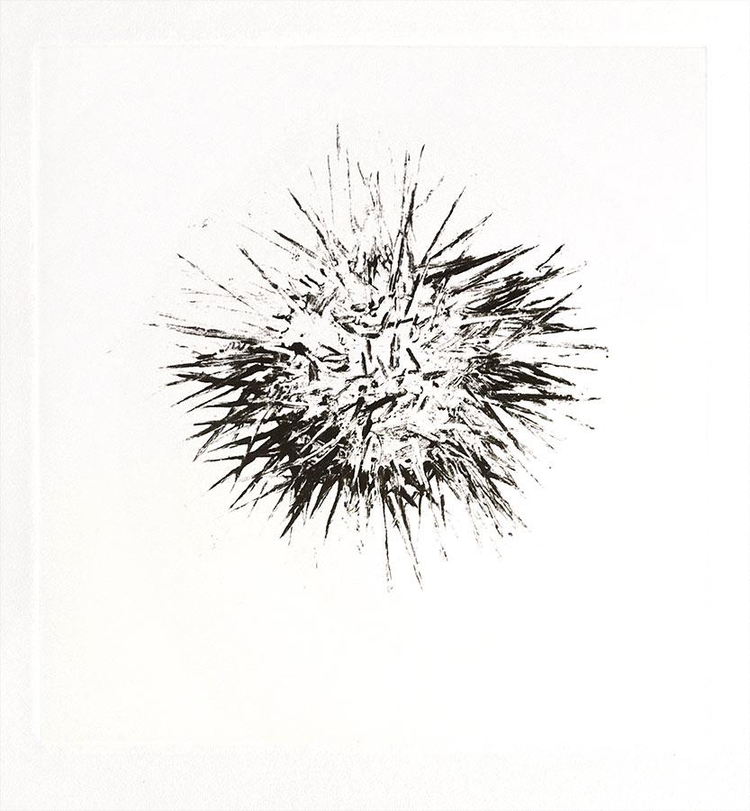 Fantôme 3. Monotype, 21 x 20 cm, 2013