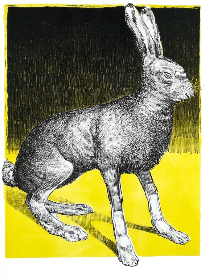 Lièvre jaune. Lithographie 10 ex. 66 x 50 cm, 2011