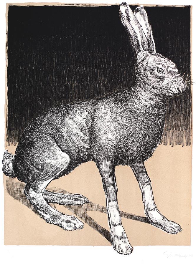 Lièvre kaki. Lithographie 5 ex. 66 x 50 cm, 2011
