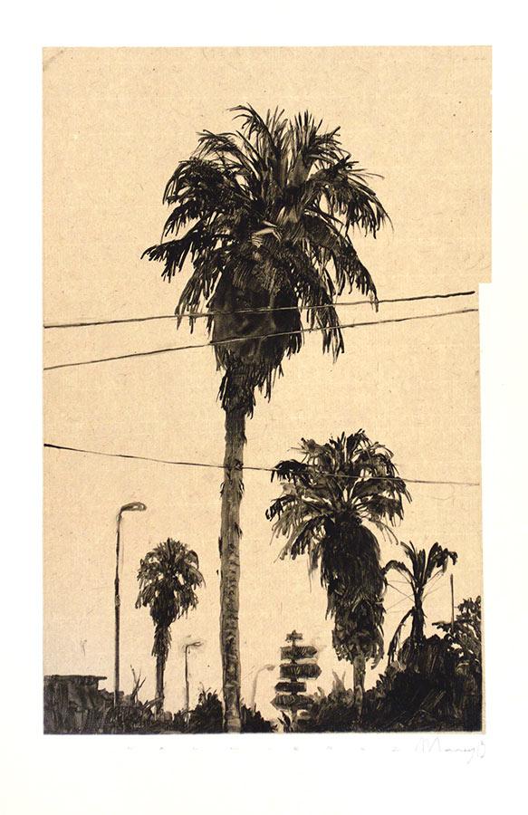 Palmiers 1. Monotype, 34,5 x 22 cm, 2013