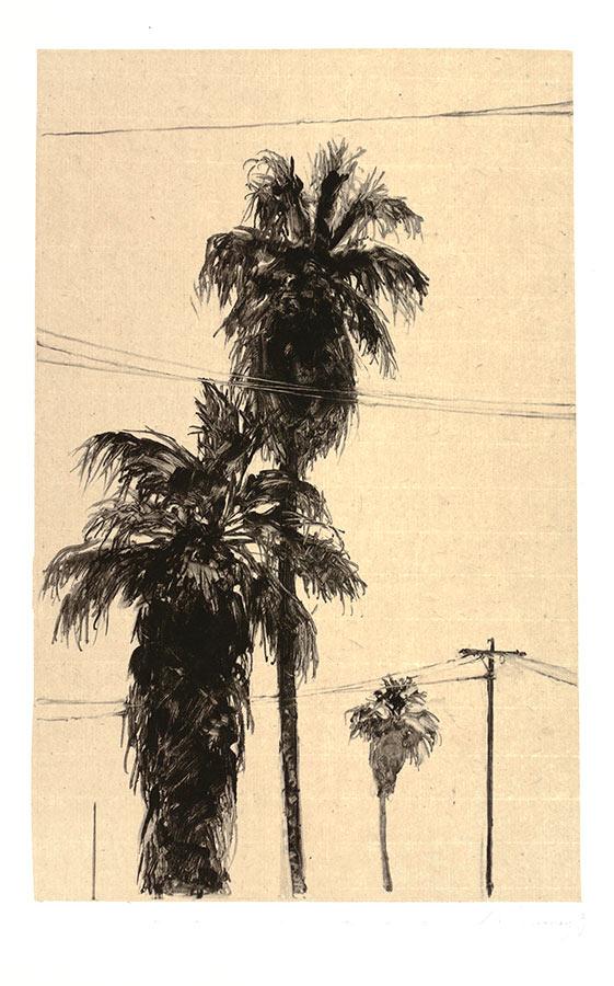 Palmiers 2. Monotype, 34,5 x 22 cm, 2013
