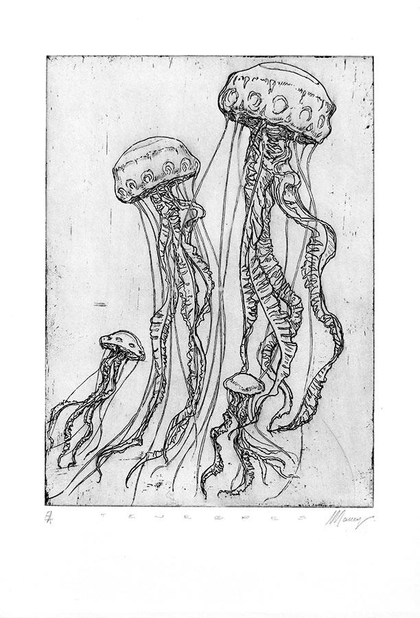 Ténèbres 5. Gravure (cuvette) 18 x 15 cm, 2014