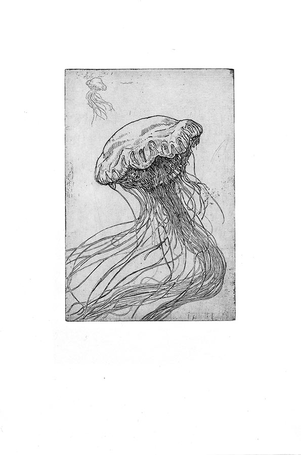 Ténèbres 7. Gravure (cuvette) 18 x 15 cm, 2014