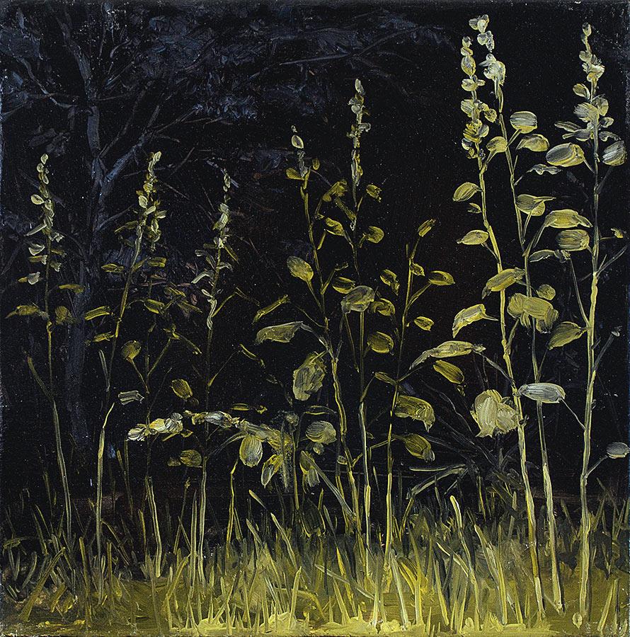 Trémières. Huile sur toile, 50 x 50 cm, 2012